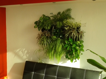 Kuchuri interior 06